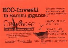 ECO-INVESTIMENTI in Bambù Gigante